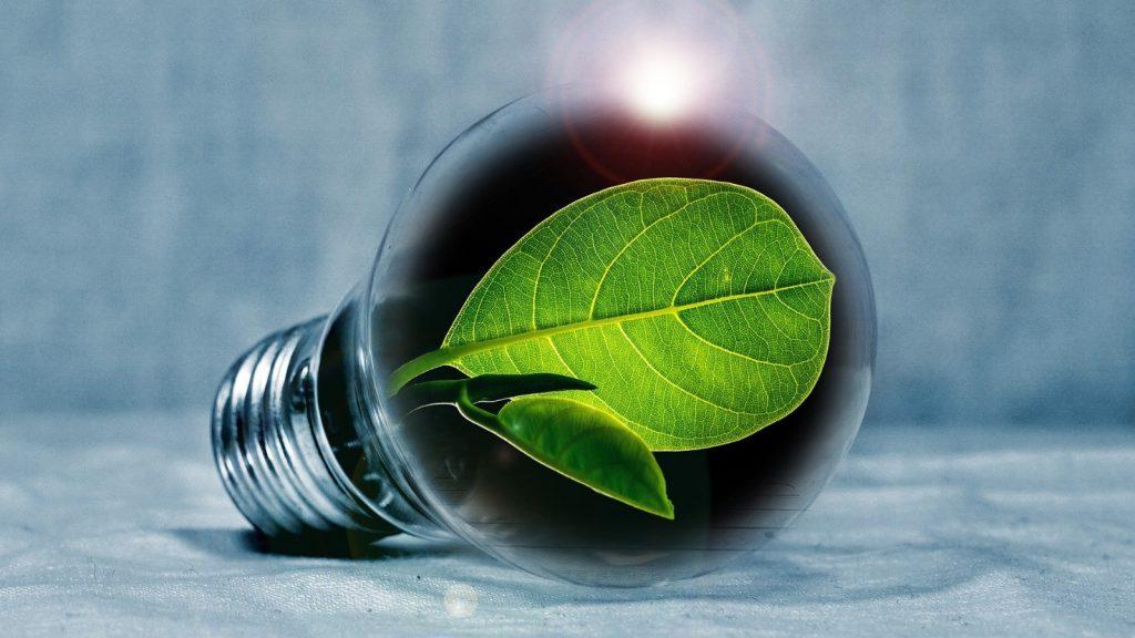 Come consumare meno energia elettrica a casa
