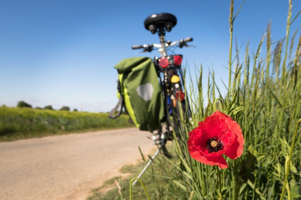 bicicletta riscoprire bellezza viaggio cicloturismo