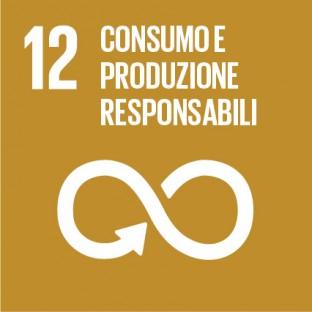 obiettivi sviluppo sostenibile sdg 2030 - 12