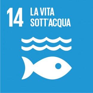 obiettivi sviluppo sostenibile sdg 2030 - 14