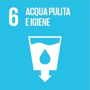 obiettivi sviluppo sostenibile sdg 2030 - 6