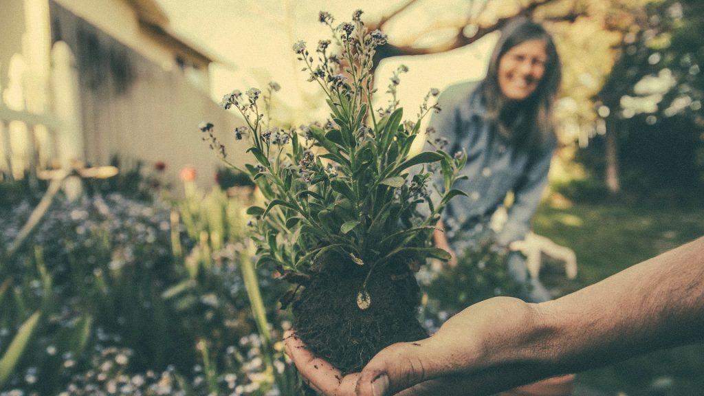 Il divario di genere nell'ambientalismo