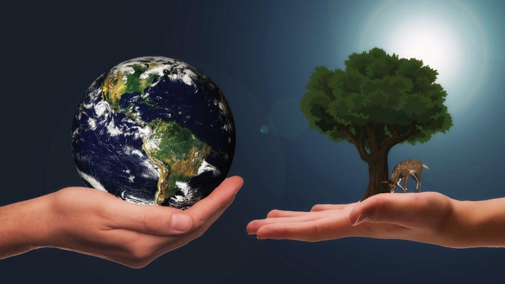 Primi passi per uno stile di vita più sostenibile